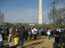 Epilepsy Walk 2011 along the National Mall
