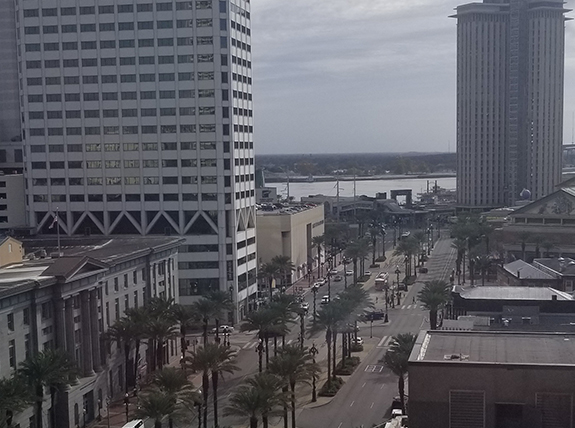 A view of New Orleans from the epilepsy meeting hotel