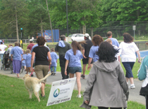 Marching for epilepsy through New Paltz