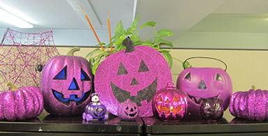 Epilepsy Activities end of year (2013): Epilepsy webinars, seminars, Purple Pumpkin Project